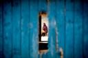 A woman is seen through a damaged door in Ngeta, Dar es salaam