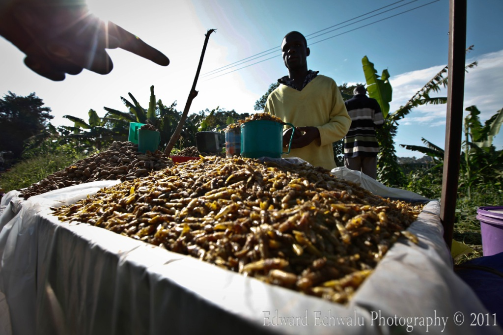 A pilgrim asks for the price of fried grasshoppers near Namugongo shrine during the martyrs day celebrations on June 3, 2011