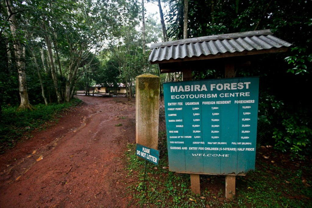 Entrance to the Mabira Eco-tourism Centre. President Yoweri Museveni recently proposed that over 7,100 hectares of part of Mabira reserve forest be given to Methta group of companies for Sugar cane plantation.