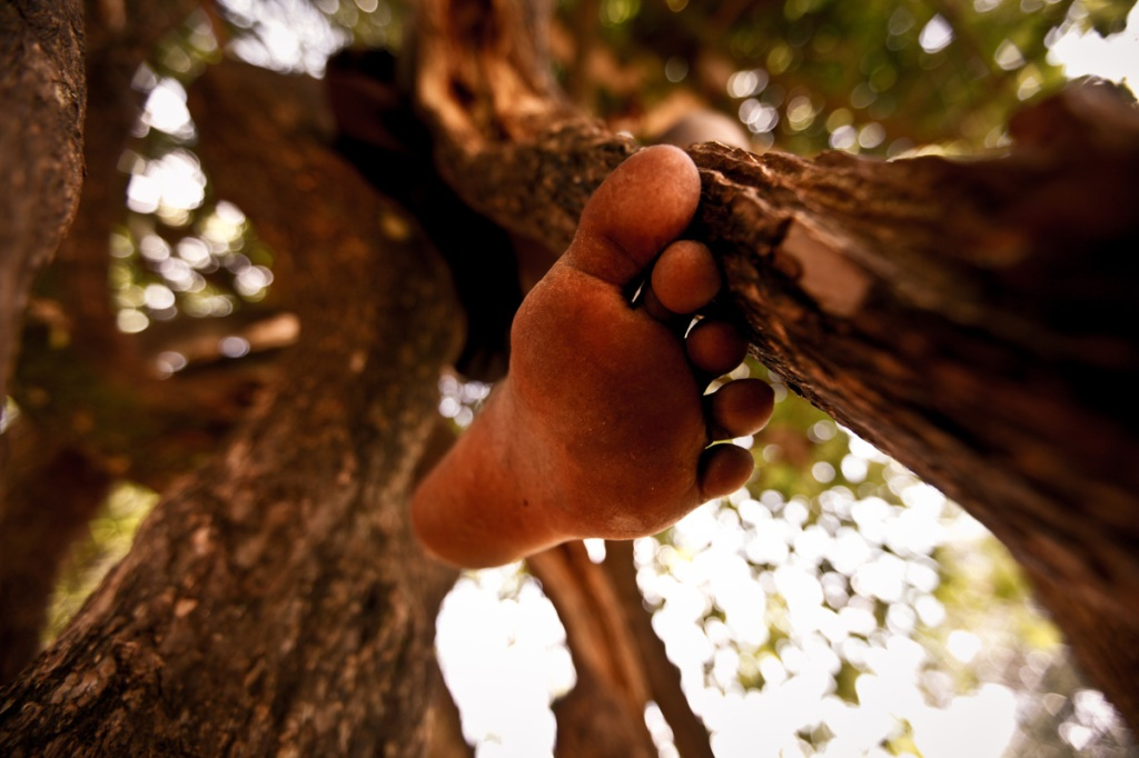 A pupil of Awere climbs a tree to during break time. Awere Primary school, located 80km northeast of Gulu town started the project of hand making sanitary pads to keep girls at school.